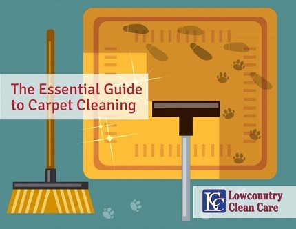 The Essential Guide to Carpet Cleaning